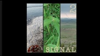 Signal Volume Two - Foley - Free Sound Effects