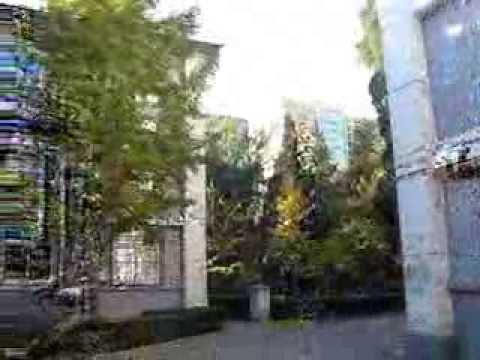 Пекинский Университет Языка и Культуры / Beijing Language And Culture University / BLCU