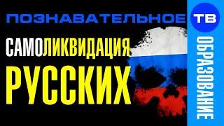 Система самоликвидации русских (Познавательное ТВ, Владимир Базарный)