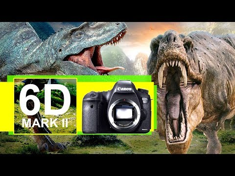 Canon 6D Mark II - Tyrone's 6 Reasons YOU'RE an OLD DINOSAUR if YOU Don't Want 6D2 4K Video