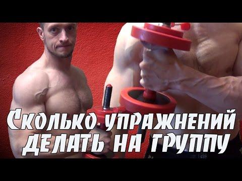 Сколько упражнений делать на одну группу мышц
