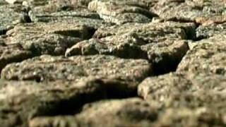 Гранитная брусчатка(, 2011-03-01T11:50:19.000Z)