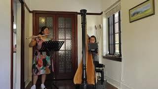 PIAZZOLLA - Psicosis (arr. flute & harp) | Estrel Duo
