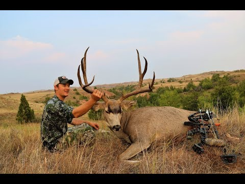 Badlands - Archery Mule Deer Hunt on Public Land 2017