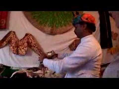 Pushkar Camel Man