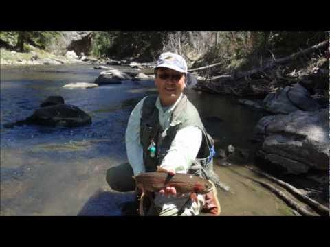 Colorado Yampa River trout fly fishing nymphing dry May 2012