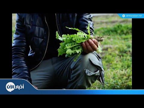 حاصر حصارك | الأمن الغذائي (الحلقة الثانية)  - 23:22-2018 / 7 / 21