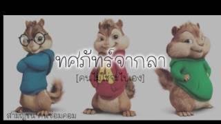 ทศภัทร์จากลา [คนไม่ใช่จะไปเอง] Cover by ชิพมังค์