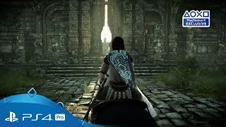 Shadow of the Colossus (PS4) ANG/PL