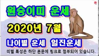 7월 원숭이띠 운세 - 2020년 7월 경자년 계미월 원숭이띠 일진 사주 운세보기