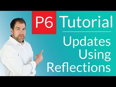 Primavera P6 Tutorial Subcontractor Updates Using