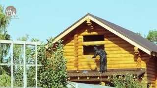 Как красить деревянный дом(В этом видео вы узнаете, как и чем правильно красить стены деревянного дома внутри и снаружи., 2015-10-09T08:45:15.000Z)