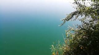 Красивые места Запорожской области! Оазис с прозрачной водой! Кто узнает место - ставьте лайк!)