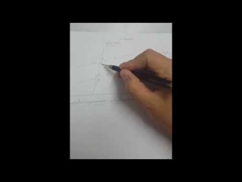 คณิตศาสตร์ ม.2 เรื่องเส้นขนาน