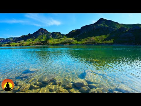 🔴 Relaxing Music 24/7, Calming Music, Relaxation Music, Meditation Music, Sleep Music, Study Music