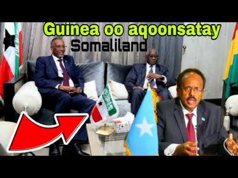 XOG RASMI AH Maxaad ka Ogtahay Xiriirka hore kaga dhaxeeyay Somalia & Guinea