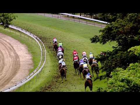 ม้าแข่งสนามฝรั่ง วันอาทิตย์ที่ 26 ก.พ. 2560
