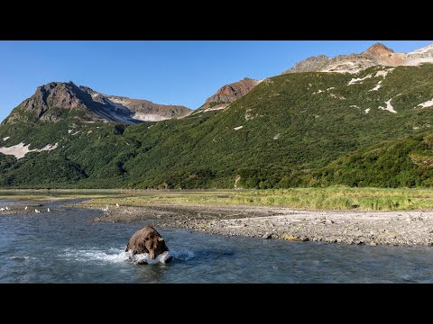 Protect Wild Alaska From Pebble Mine