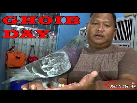 BLUSUKAN KE KANDANG Team GHOIB DAY Jakarta | Team Yang SUKSES ORBITKAN LEMON TEA