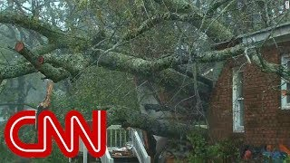 Florence topples tree killing mother, infant