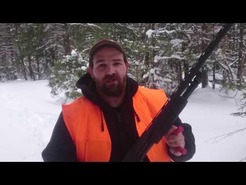 Gun Review: Stevens 350 pump 12ga, Savage Arms import.