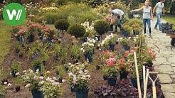 Der Rosengarten - Tipps für Rosen von Gartenprofi Josef Starkl