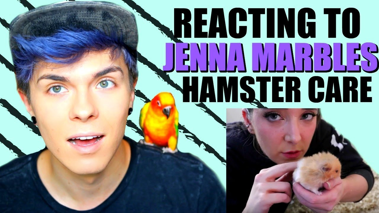 pet-youtuber-reacts-to-jenna-marbles-hamster-care