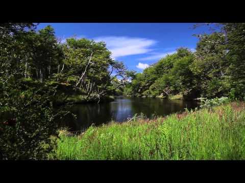 Isla Riesco, Región de Magallanes, Chile   By Outdoors TV©