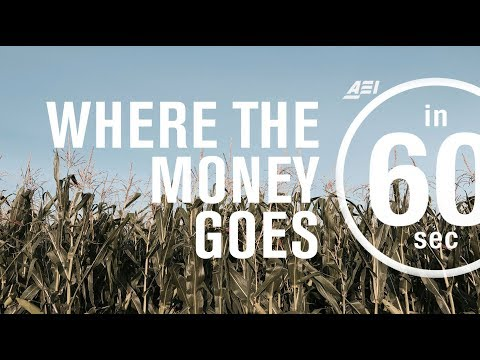 Farm subsidies: Where the money goes | IN 60 SECONDS