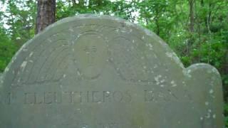 Exploring the Bethel Presbyterian Church cemetery