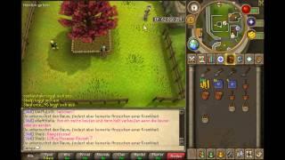 [RuneScape] Farming Runde mit allen Baum-Parzellen Spots