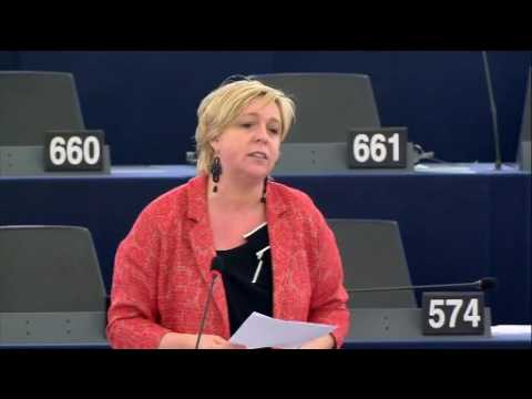 Hilde Vautmans 06 Jul 2016 plenary speech on EU's Foreign and Security Policy