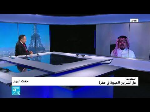 السعودية: هل الشرايين الحيوية في خطر؟  - نشر قبل 3 ساعة