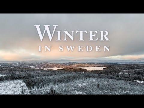 Winter in Sweden | 1 Day Roadtrip (4K Drone)