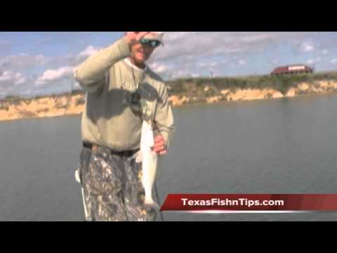Texas Fishing Tips Fishing Report Nueces Bay #2 RedFish &Trout