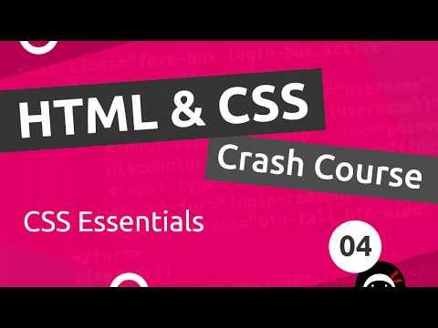 HTML & CSS Crash Course Tutorial #4 - CSS Basics