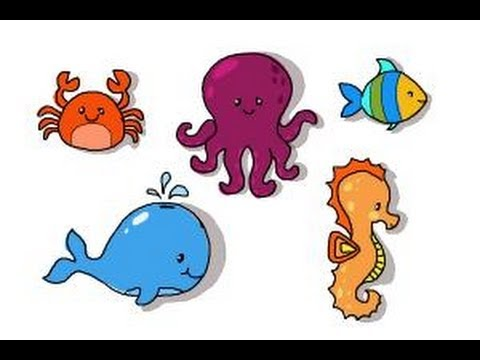 How to draw ocean animals - YouTube