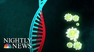 New Form Of Gene Therapy Could Be A Cure For 'Bubble Boy' Disease | NBC Nightly News
