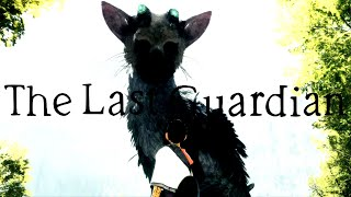 The Last Guardian - HISTÓRIA COMPLETA EXPLICADA