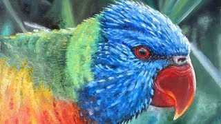 Rainbow Lorikeet Painting...and in person!!