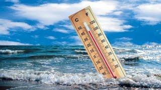 Глобальное потепление климата, динамика экосистем