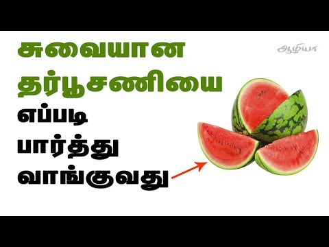 watermelon-in-tamil-|-தர்பூசணி-|-how-to-choose-watermelon-in-tamil