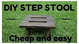 DIY One Board Step Stool Easy and Cheap