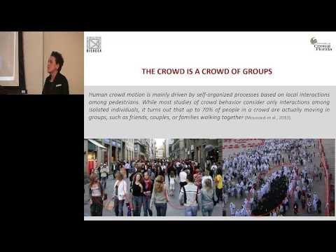Groups and Complex crowd phenomena