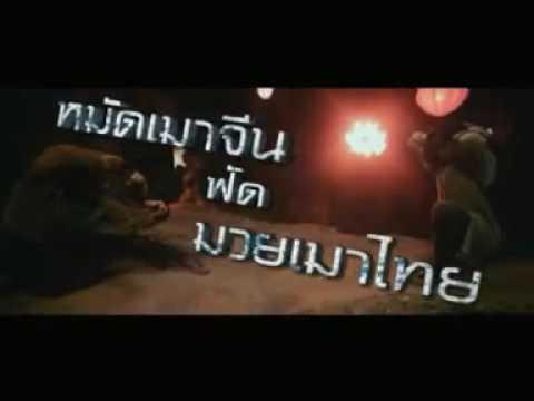 Trailer do filme Fênix Indomável