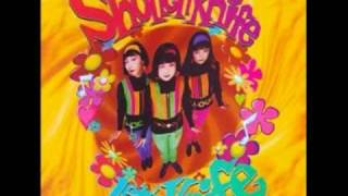 Watch Shonen Knife Tortoise Brand Pot Scrubbing Cleaners Theme green Tortoise video