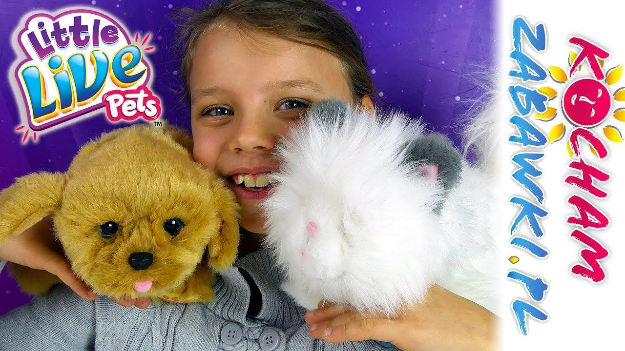 Little Live Pets • Kotek i Piesek • Wspaniałe interaktywne zwierzaki • Cobi • Openbox