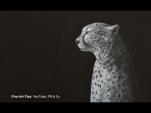 How to Draw a Cheetah - Narrated