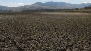 Video: Cambio climático: la sequía causa hambre en Centroamérica