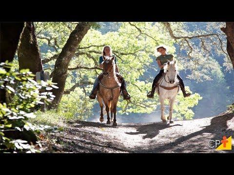 Curso Aprenda a Montar e Lidar com Cavalos CPT